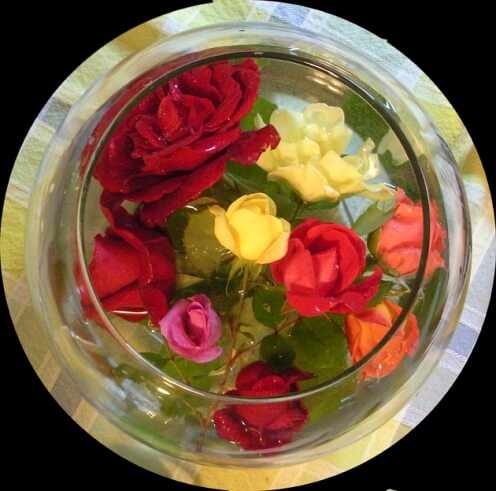 e'er...all the roses that are blooming