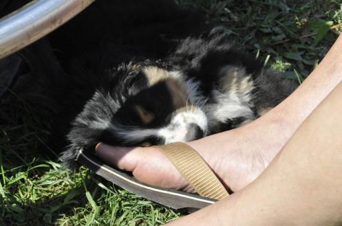 sleeping-with-flip-flops