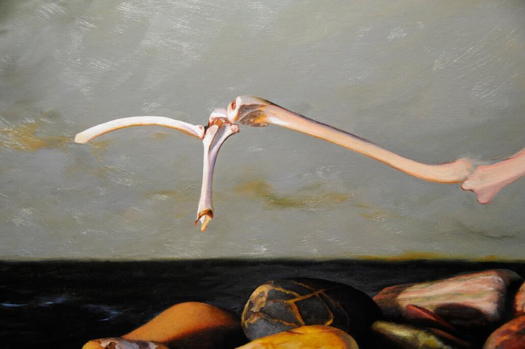 closeup-of-bones