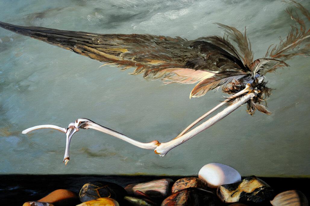 feathers-begun