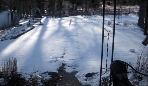 sunrise-shadows1