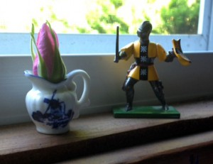 sir bernard and the rose